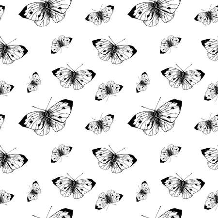 Butterfly sketch pattern. Hand drawn insect butterflies cabbage on white background. Seamless vector backdrop.