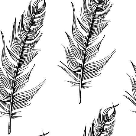 Feathers pattern. Hand-drawn sketch style bird feathers on white background. Seamless vector backdrop. Black and white.
