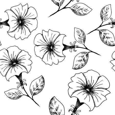 Flower background. Hand-drawn black and white sketch style petunia flowers on a white backdrop. Seamless vector pattern.