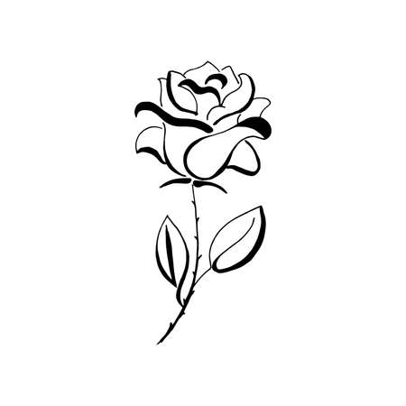 Flower. Black hand-drawn rose. Vector, design element. Isolated on a transparent background. Blossom icon