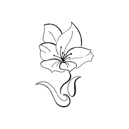 Black hand-drawn flower. Vector, design element. Isolated on a transparent background. Blossom icon