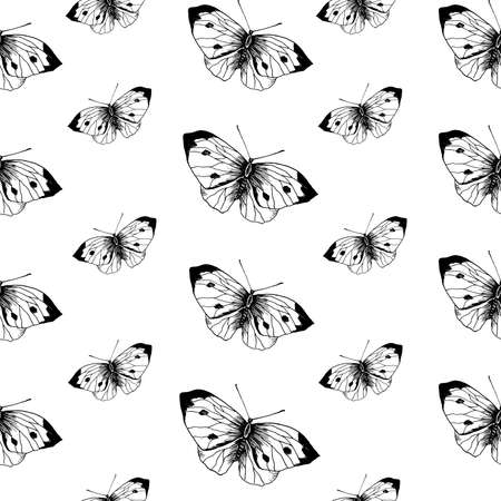 Butterfly sketch pattern. Hand drawn insect butterflies cabbage on white background. Seamless vector backdrop