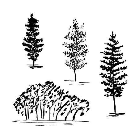 Sketch trees, set of hands drawn silhouette trees, vector illustration isolated on white background.