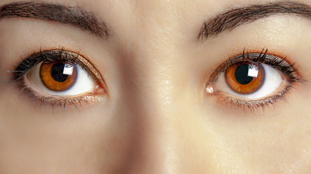 women face stare: Closeup of front view of beautiful young brown woman eyes Stock Photo