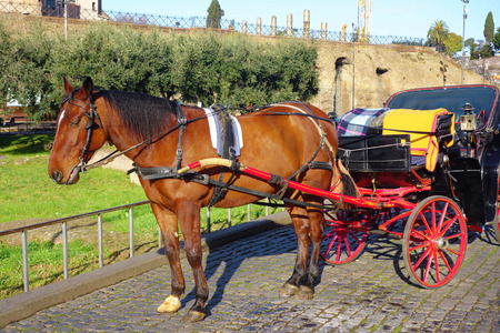 Horse and carriage at Colosseum in Rome Italy Stock Photo