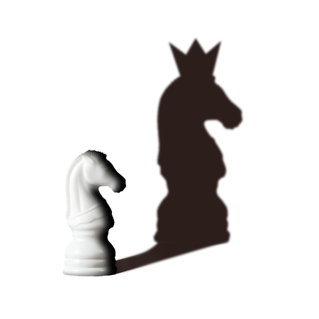 Chess horse with shadow feels as king on white. Vision Potentiality concept