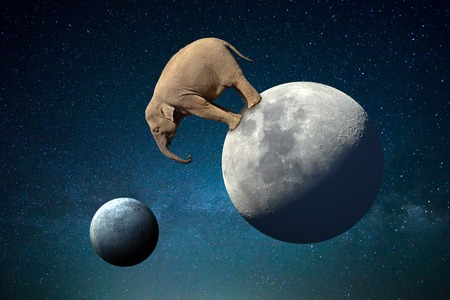 Big elephant on the Moon in the cosmos Stock Photo