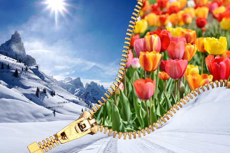 Winter Spring open Zip season transition concept. It can be used to express changing concept or passage of the time. 写真素材
