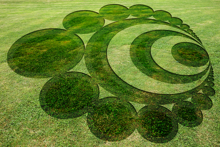 Concentric circles symbols fake crop circle in the meadow Stock Photo - 120089460
