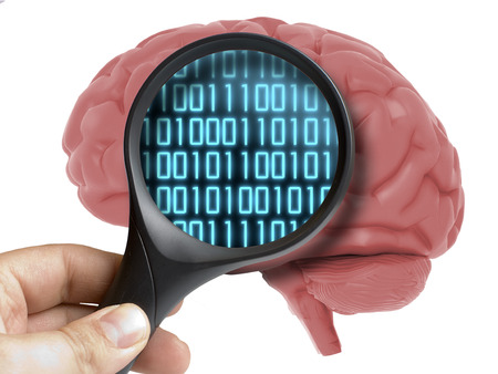 Human Brain Analyzed with magnifying digital binary code programming inside isolated on white Stock Photo