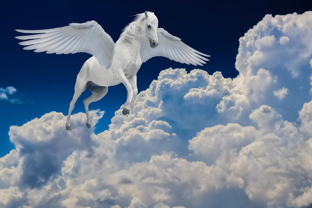 Pegasus winged legendary white horse flying with spread wings in cloudy sky 版權商用圖片