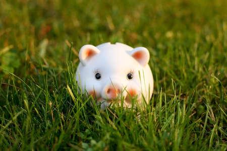 Piggybank on Grass Stock Photo