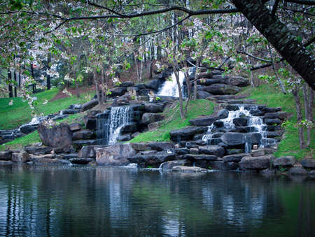 Trickling waterfall with dogwood tree Stock Photo - 24900441