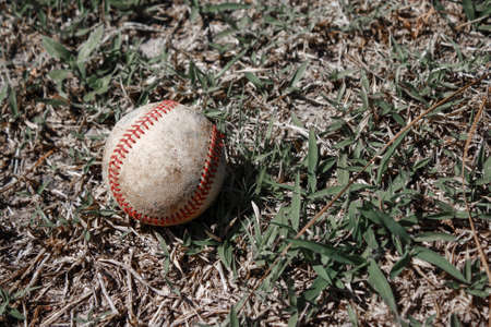 Image of a Baseball Stock Photo - 28829266
