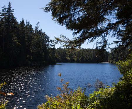 湖正午 写真素材
