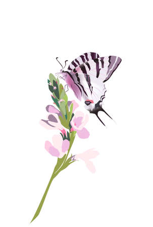 Purple Butterfly, vector illustration design nature lavander