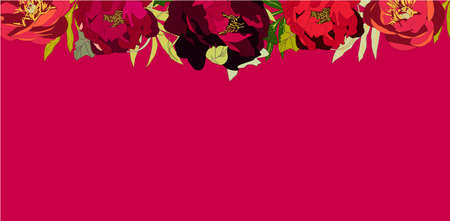Red peony Banner, vector illustration summer spring