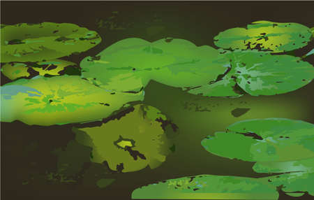 leaves on the water, vector lake tropical