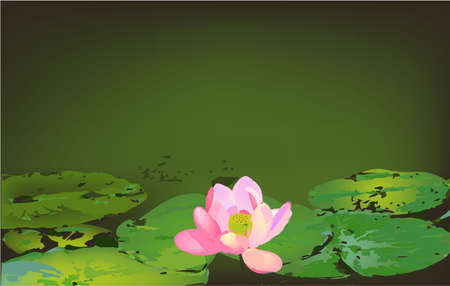 leaves and lotus on the water banner, vector
