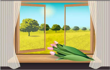 Window, sky, trees and tulips landscape sky Stockfoto