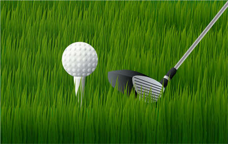 golf ball and golf club on the grass green