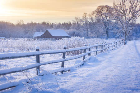 snow field: Rural house with a fence in winter