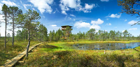turba: Vista panorámica de los pantanos Viru