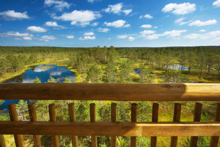 bogs: View to bogs from a tower Stock Photo