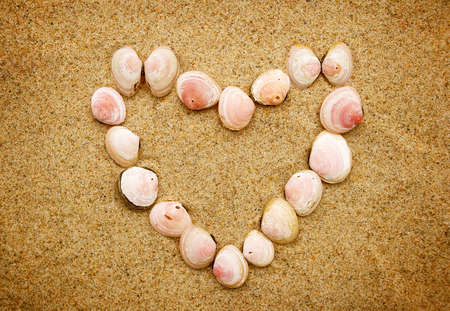 heart in sand: Heart shaped seashells on the sand Stock Photo