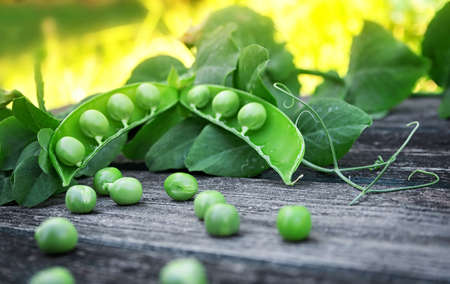 Peas on wooden board photo