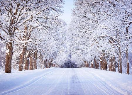 Steegje in sneeuwochtend Stockfoto
