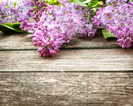 Lilac flowers on wooden background photo