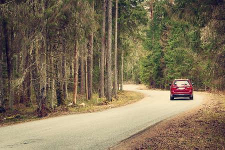 asfalt weg op bewolkte lentedag in het bos