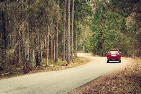 travel destination: asphalt road on cloudy spring day in the forest Stock Photo