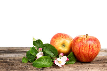 isolated apples with flowers on wooden board photo
