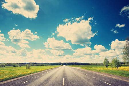 путешествие: Асфальтовая дорога и одуванчика поле на synny день
