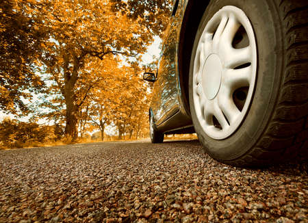 route: Car sur la route d'asphalte sur les jours d'été au parc