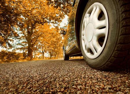 carretera: Coche en el camino de asfalto en día de verano en el parque Foto de archivo