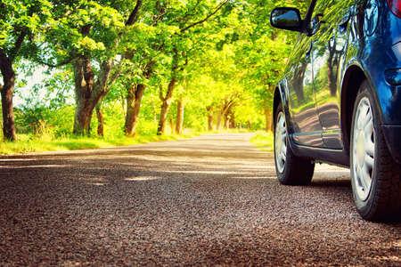 Carro na estrada asfaltada no dia de verão no parque