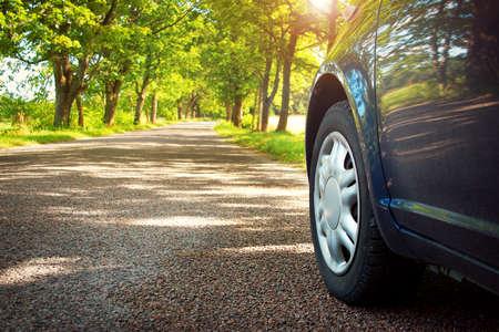 Coche en el camino de asfalto en día de verano en el parque Foto de archivo - 44860189