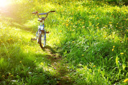 touring: bike in the park with dandelions in pleasant sunny spring day Stock Photo