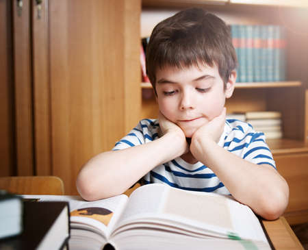 boy beautiful: seven years old child reading a book at home Stock Photo