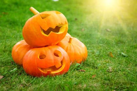 reife Kürbisse für Halloween auf grünem Gras Hintergrund