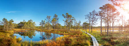 Viru bogs at Lahemaa national park in autumn. Wooden path at beautiful wild place in Estonia Reklamní fotografie - 63437008