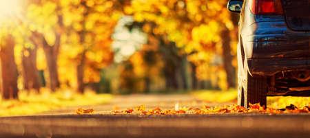 familia viaje: Coche en el camino de asfalto en autumnr día en el parque Foto de archivo