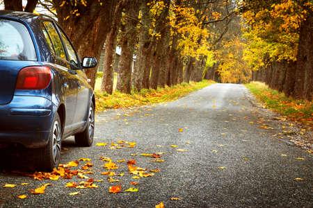 Car on asphalt road on autumnr day at park Stok Fotoğraf - 66130346