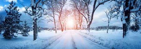 눈 덮인 골목길을 따라 겨울 파노라마 스톡 콘텐츠