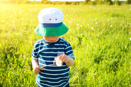 Baby boy standing in grass on the fieald with dandelions