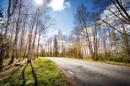 Road panorama on sunny spring evening