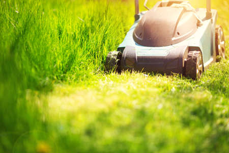 Grass cutter mowing the lawn in summer